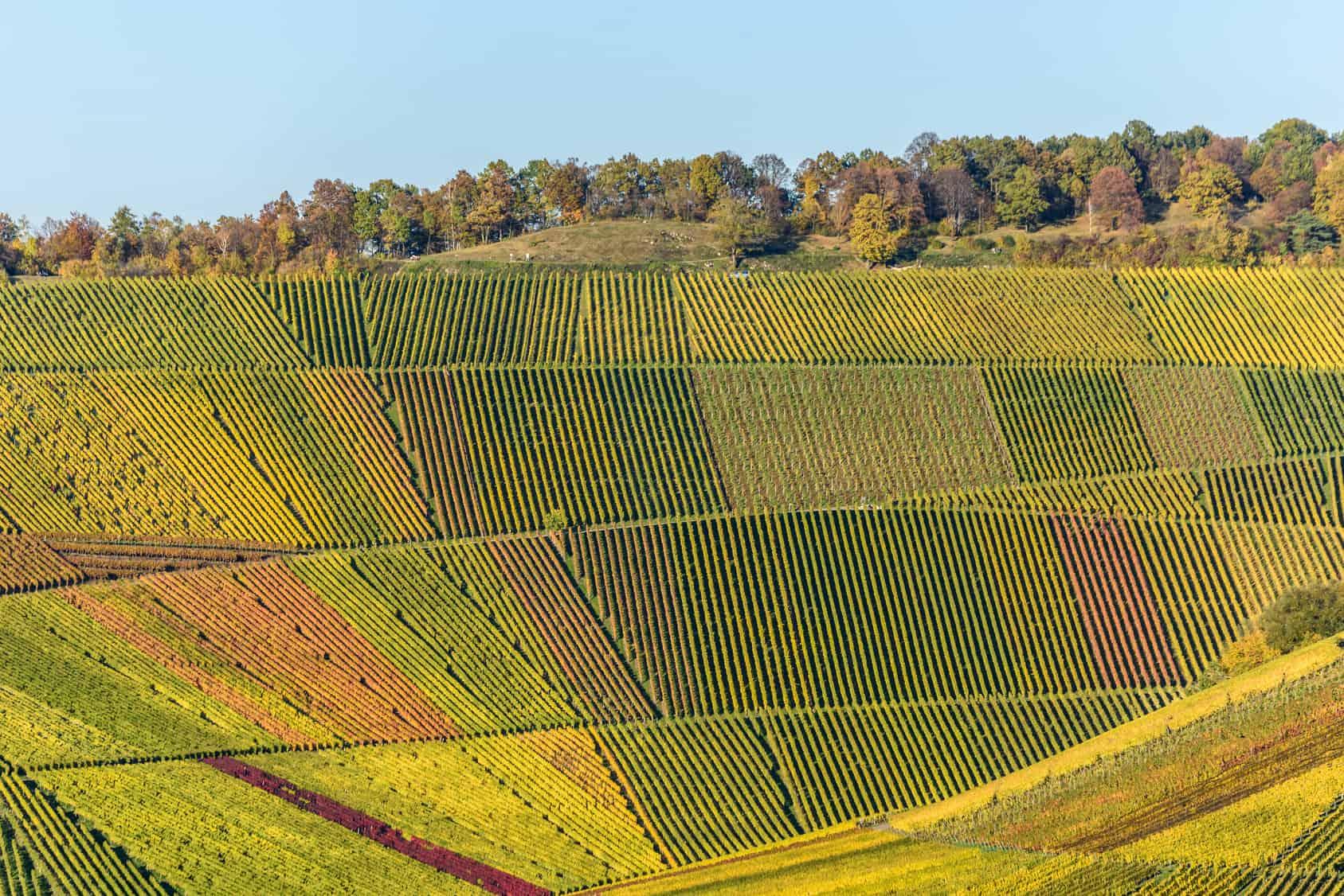Das Weinland Spanien
