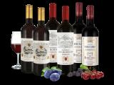 Weingenuss von kleinen Châteaux8,89€ pro l
