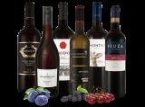Das große Merlot-Weinpaket8,87€ pro l