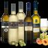 Perticaia Montefalco Rosso 2015 bei Wine in Black