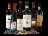 Italien Schatzkiste – Kräftige Rotwein-Klassiker18,77€ pro l