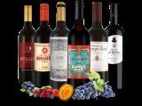 Spanisches Rotwein-Topseller-Probepaket8,89€ pro l