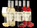 Kleines Spanien-Bierzo-Probierpaket – Guerra de pura cepa6,66€ pro l