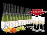 Vorteilspaket 10 Flaschen Cava Cossètania und 4 Gläser gratis bei ebrosia