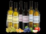 Weingut Kiefer Burgunder-Probierpaket bei ebrosia