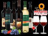 Kennenlernpaket Castello Banfi aus der Toskana inkl. 2 Gläser bei ebrosia