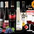 Skoff Original Gamlitz Sauvignon Blanc Südsteiermark Dac 2019 – Wein, Österreich, trocken, 0,75l bei Belvini
