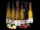 Kennenlernpaket Weingut Bender aus der Pfalz bei ebrosia