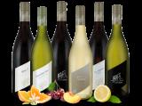 Kennenlernpaket Weingut R&A Pfaffl aus Österreich10,00€ pro l