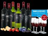 Kennenlernpaket Südafrikanische Klassiker von Stellenview8,89€ pro l