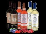 Kennenlernpaket 6 Flaschen Das Gold Apuliens von Torrevento bei ebrosia