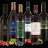Vom Haardtsandstein Riesling trocken (Bio) – 2019 – Müller-Catoir – Deutscher Weißwein bei Weinfreunde