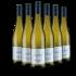 WirWinzer Select 2020 Dreihundert Sauvignon Blanc trocken BIO Weingut Hahn Pahlke – Pfalz – bei WirWinzer