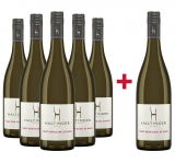 Haltinger 2018 5+1 Blanc de Noirs trocken Paket Weingut Haltinger – Baden – bei WirWinzer