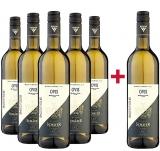 Schäfer 2019 5+1 Paket  OVIS Weißwein Cuvée trocken Bio Bioweingut Schäfer – Württemberg – bei WirWinzer