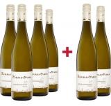 Alois Zimmermann 2020 4+2 Kremser Kapuzinerberg Riesling DAC Kremstal trocken Paket Weingut Alois Zimmermann – Kremstal DAC (AT) – bei WirWinzer