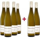 Alois Zimmermann 2019 4+2 Kremser Kraxn Riesling trocken Paket Weingut Alois Zimmermann – Kremstal DAC (AT) – bei WirWinzer