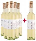 Albig 2019 5+1 Paket  Cabernet Sauvignon Blanc de Noir trocken Winzergenossenschaft Albig – Rheinhessen – bei WirWinzer