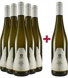 Karl Stein 2020 5+1 Paket Grauburgunder Weingut Karl Stein – Nahe – bei WirWinzer