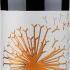 Lemberger vom bunten Mergel trocken – 2018 – Maier – Deutscher Rotwein bei Weinfreunde