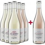 Weckbecker 2020 5+1 Secco Paket Weinbau Weckbecker – Mosel – bei WirWinzer
