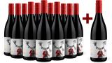 Te Awanga 11+1 Set Mister Syrah Hawke's Bay 2017 bei Wine in Black