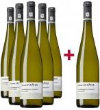 Johann Baptist Schäfer 2018 5+1 Rümmelsheimer Steinköpfchen Riesling VDP.Erste Lage Paket Weingut Johann Baptist Schäfer – Nahe – bei WirWinzer