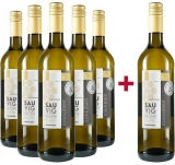 Schwalbenhof 2018 5+1 Paket Sauvignon Blanc halbtrocken Weingut Schwalbenhof – Rheinhessen – bei WirWinzer