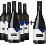 Rainer Wein 2019 Traditions-Rotweine Probierpaket Weingut Rainer Wein – Burgenland (AT) – bei WirWinzer