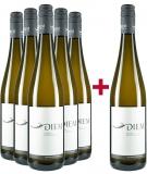 Diem Gerald und Andrea 2020 5+1 Paket Gelber Muskateller Weingut Diem Gerald und Andrea – Weinviertel DAC (AT) – bei WirWinzer