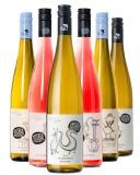 Gruber Röschitz 2020 Gruber Röschitz Probierpaket Weingut Gruber Röschitz – Weinviertel DAC (AT) – bei WirWinzer
