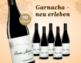 Sierra Iberica 2016 – 6er E*Special 4.5L 13% Vol. Trocken Weinpaket aus Spanien