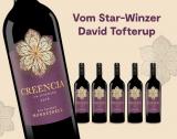 Creencia Juventud 2016 – 6er E*Special 4.5L 15% Vol. Trocken Weinpaket aus Spanien
