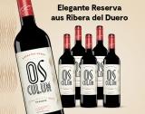 Osculum Reserva 2013- 6er E*Special 4.5L 14% Vol. Trocken Weinpaket aus Spanien
