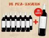 Mesa/4.9 Tinto – 12er E*Special inkl. 1 Fl. Gratis 9.75L 14.5% Vol. Trocken Weinpaket aus Spanien