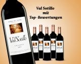 Val Sotillo Crianza 2015 – 6er E*Special 4.5L 14.5% Vol. Trocken Weinpaket aus Spanien