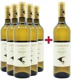 Landmann 2019 5+1 Paket Pinot Gris trocken Bio Weingut Landmann – Baden – bei WirWinzer
