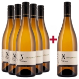 Nehrer 2019 5+1 2019 Chardonnay Leithaberg DAC Weingut Nehrer – Burgenland (AT) – bei WirWinzer