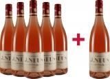 J. Neus 2019 5+1 Rosé VDP.Gutswein trocken Paket Weingut J. Neus – Rheinhessen – bei WirWinzer