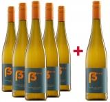 Christopher Deiß 2020 Blanc de Noir GUTSWEIN Paket trocken Weingut Christopher Deiß – Rheinhessen – bei WirWinzer