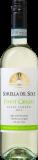 Sorella del Sole Pinot Grigio Delle Venezie DOC   6 Flaschen bei Weinvorteil
