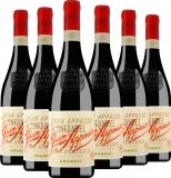 6er Aktion Gran Appasso Organic Zinfandel 2019 – Weinpakete – Fem…, Italien, trocken, 4.5000 l bei Belvini