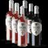 2019 Anderra Chardonnay / Weißwein / Valle Central Valle Central bei Hawesko