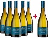 Würtzberg 2019 5+1 Paket  Pinot Blanc trocken Weingut Würtzberg – Mosel – bei WirWinzer