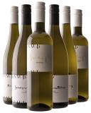 Knauß 2019 Frühlingspaket BIO Weingut Knauß – Württemberg – bei WirWinzer