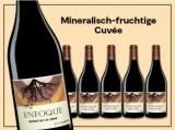 Altolandon Enfoque 2015 6 Flaschen für nur 45,00€ statt 89,70€ mit -50%