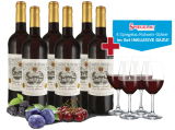 Château Grand Jour Bordeaux AOC 2016 6 Fl. inkl. 4 Gläser