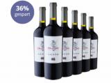 Dragone 6er Festtagspaket für nur 49,50€ statt 76,80€ -36% gespart!