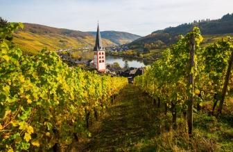 Das Weinland Deutschland
