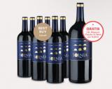 Solnia Colección Rafa 6er-Paket + GRATIS Magnumflasche